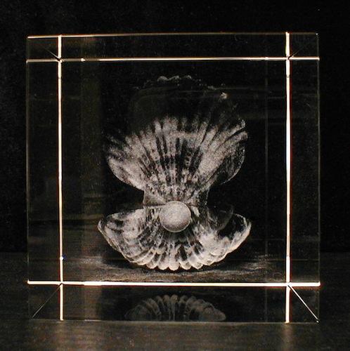 Раковина с жемчужиной в стекле