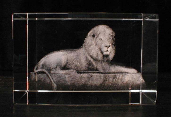 Лев в стекле