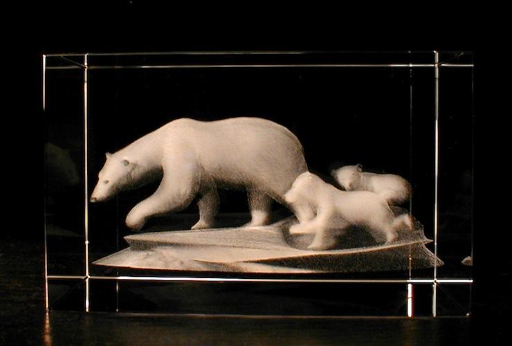 Медведи в стекле
