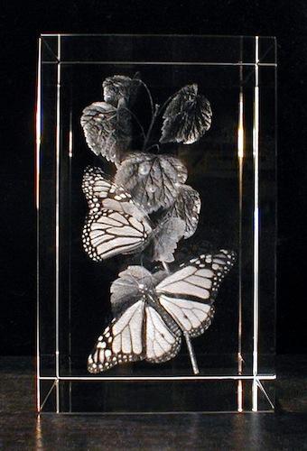Бабочки в стекле
