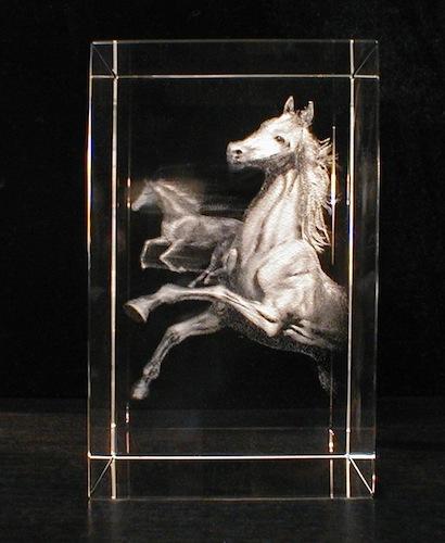 Лошади в стекле