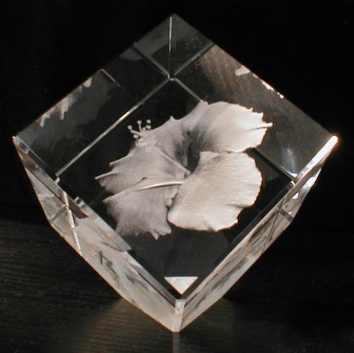 Цветок в стекле