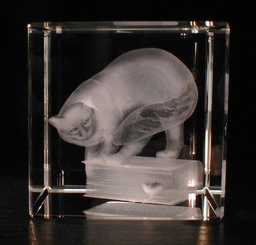 Котяра в стекле