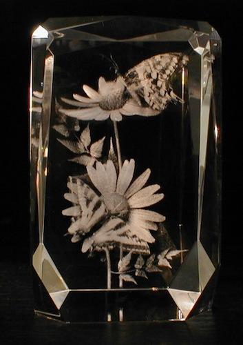Цветы с бабочкой в стекле