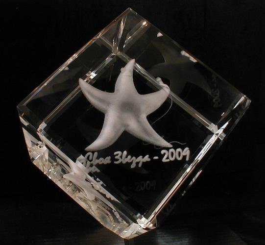 Морская звезда в стекле
